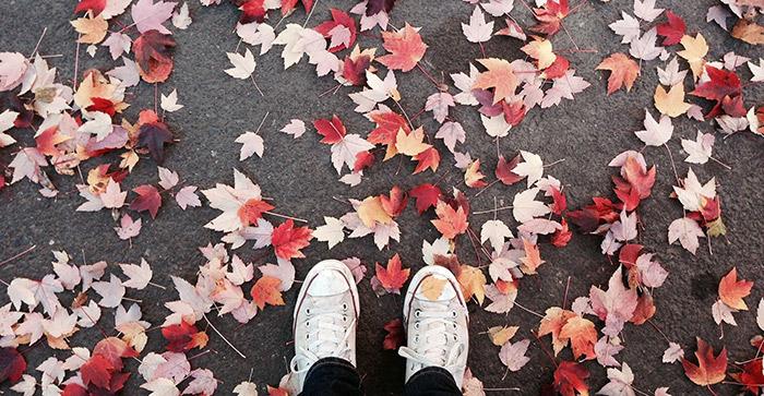 Visit Vilnius in November to see the fallen leaves