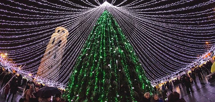 Vilnius Christmas trees 2016, visit Vilnius in December