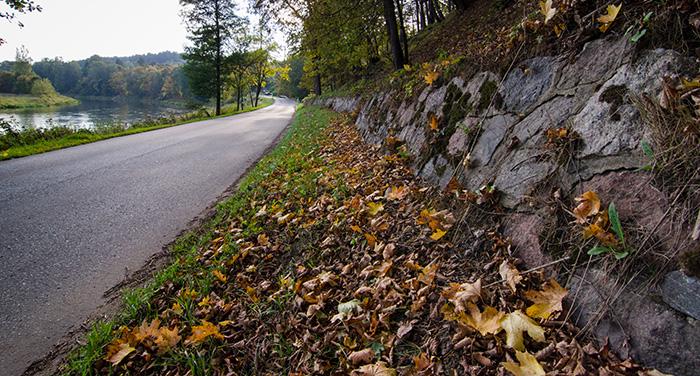 Vilnius in Septembe: the trees start loosing the leaves