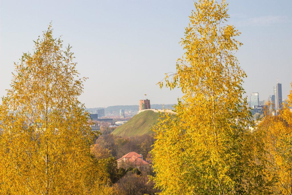 Things to do in Vilnius in September